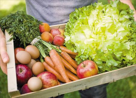 食品消费行业专题:消费升级 获利可期