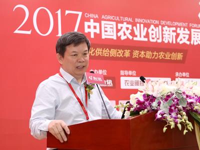 中国地方金融研究院副院长、经济学教授、地方金融专家 汤烫