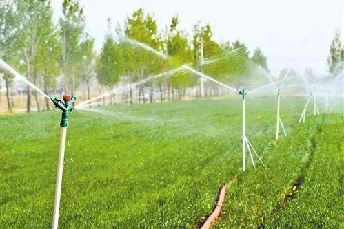 河北省廊坊市大城县贾庄村幼麦浇水采用了喷灌技术,撙节水资源的同时,避免了土壤板结。 (摄于2018年4月)