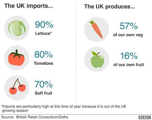 英国进口和自产食物比例 图片来源:BBC