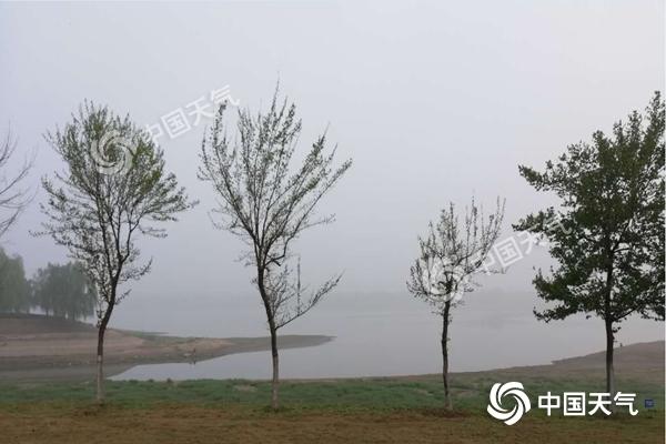 今晨安徽遭大雾袭击 周末迎大风降温