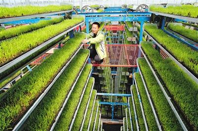 """中国农业""""科幻感""""急升"""
