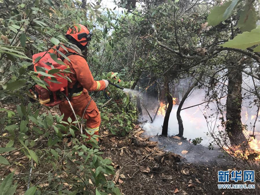 云南永平森林火灾明火已灭 过火面积约1380亩