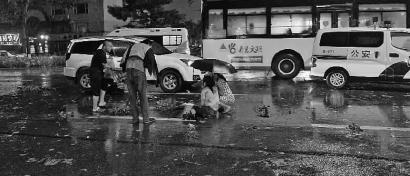 黑夜里,好心市民冒着狂风大雨一直蹲在马路上为被撞女孩撑伞