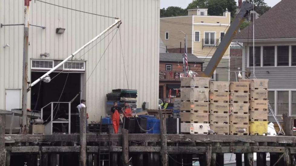图为龙虾贸易商文斯莫尔蒂拉罗的龙虾储存仓库。(视频截图)