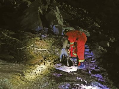 幸存人员讲述生死一瞬 两同事逆行救人失联