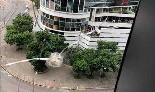 图 | 香港大公文汇全媒体新闻中心