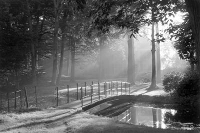 """一起去""""野""""!我国新增3条国家森林步道"""