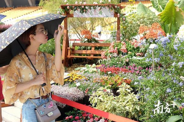 国庆期间广州的假日旅游新时尚,你get到了吗?