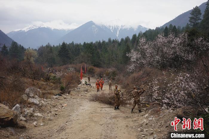 现场直击:西藏全力控制林芝巴宜区山火西线火情