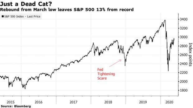 分析师:美股今年可能会进一步反弹走高