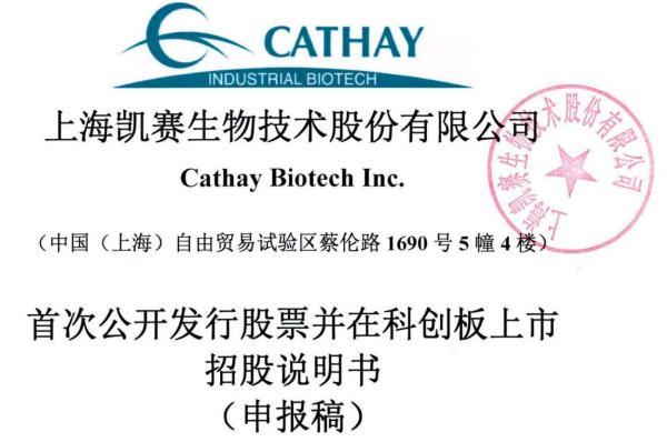 凯赛生物IPO:存在安全生产风险,曾深陷专利纠纷,票据流转、转贷等违规不断
