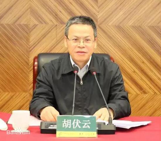 中信证券华南公司董事长胡伏云