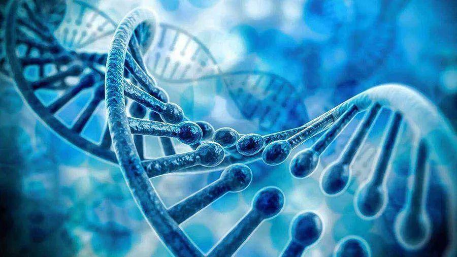 生物大分子药物领跑,天广实生物拟挂科创板上市