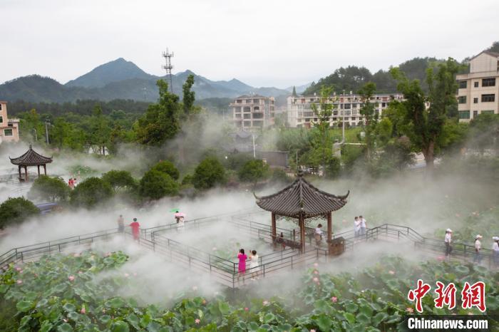 """""""两山""""理念在浙江焕新之源:基层善治赋能绿水青山"""