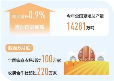 守稳农业基本盘 粮食丰收有保障(新数据 新看点)
