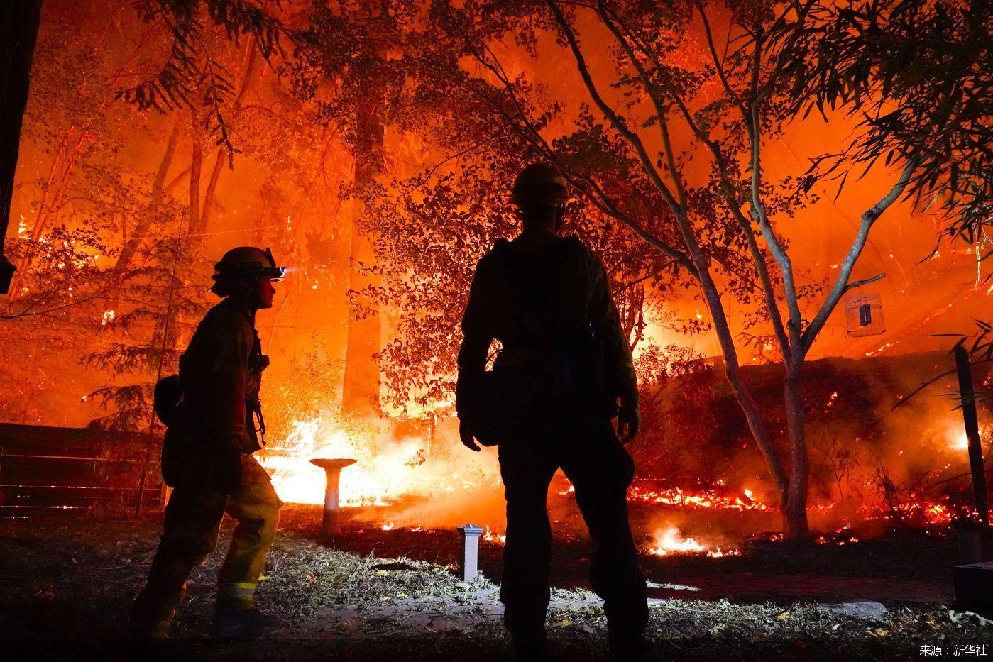 疫情反弹又遇山火肆虐 加州遭遇双重打击
