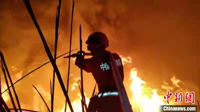 140名指战员全力扑救福建龙岩森林火灾