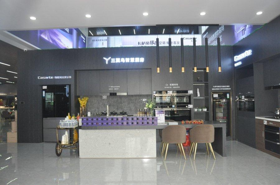 换道场景再提速!三翼鸟卡萨帝001号店锦州开业