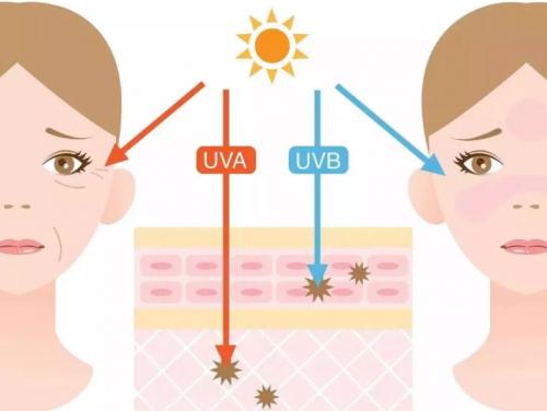用防嗮锁住肌肤水分,希芸助力广大消费者夏季防晒