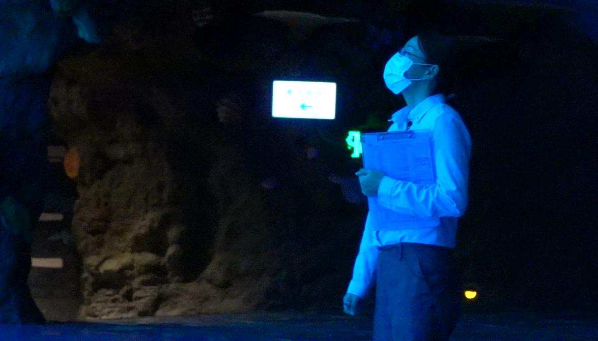 长隆鱼大夫:给鱼儿看病是个技术活
