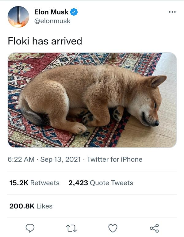 马斯克晒新宠物狗照片!同名山寨狗狗币一天暴涨14倍